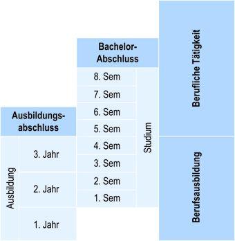 Struktur des Studiengangs